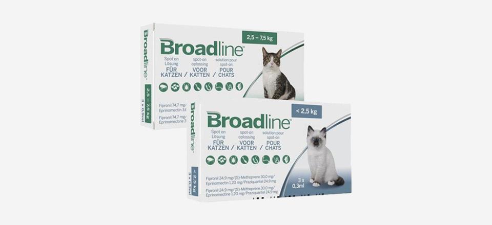Nová antiparazitární ochrana pro kočky