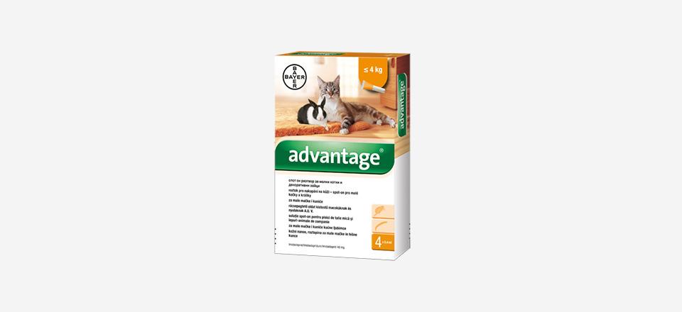 Bayer Advantage – K boji proti blechám!
